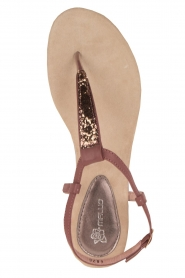 Maluo |  Leather sandals Mabel | bordeaux
