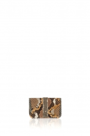 Tembi |  Leather cardholder Snake | brown  | Picture 1