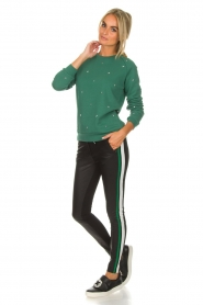 Aaiko |  Faux leather pants Sosa | black and green  | Picture 2