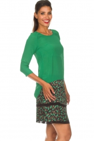 Aaiko |  Skirt Lena | green  | Picture 4
