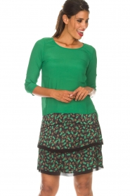 Aaiko |  Skirt Lena | green  | Picture 2
