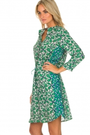 Aaiko |  Dress Fevelyn | green  | Picture 5