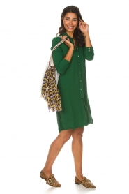 Aaiko |  Tunic dress Coa | green  | Picture 3