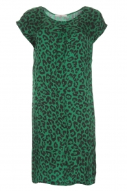 Aaiko |  Dress Madrid | green  | Picture 1