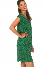 Aaiko |  Dress Madrid | green  | Picture 5