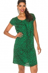 Aaiko |  Dress Madrid | green  | Picture 2