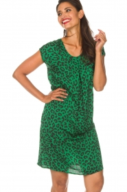 Aaiko |  Dress Madrid | green  | Picture 4