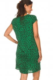 Aaiko |  Dress Madrid | green  | Picture 6