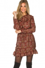 Set |  Floral dress Marinella | brown  | Picture 2