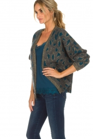 Set |  Cardigan with leopard print Sue | grey  | Picture 4