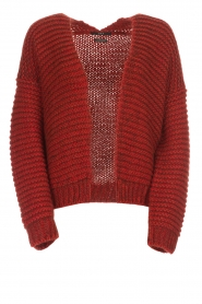 Set |  Knitted cardigan Vieve | red  | Picture 1
