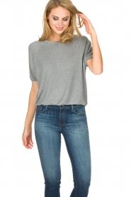 American Vintage | T-shirt Mashadog | grijs  | Afbeelding 2
