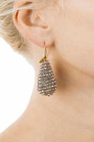 Miccy's |  Earrings big crystal Drop | Silver  | Picture 3