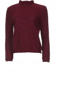 Des Petits Hauts |  Sweater Jason | bordeaux  | Picture 1