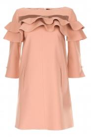 ELISABETTA FRANCHI |  Dress Shyla | pink  | Picture 1