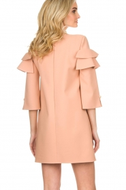 ELISABETTA FRANCHI |  Dress Shyla | pink  | Picture 6