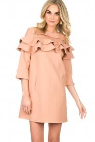 ELISABETTA FRANCHI |  Dress Shyla | pink  | Picture 4