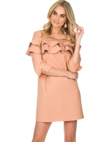 ELISABETTA FRANCHI |  Dress Shyla | pink  | Picture 2
