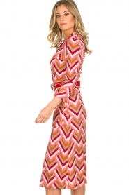 ELISABETTA FRANCHI |  Midi dress Nina | pink  | Picture 6