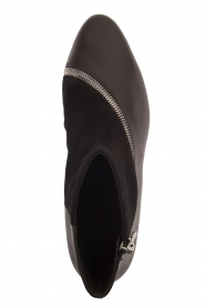 What For |  Leather ankle boots Jim | black   | Picture 5