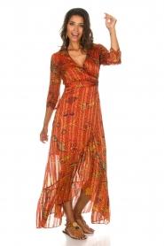 ba&sh |  Maxi dress Disy | orange  | Picture 8
