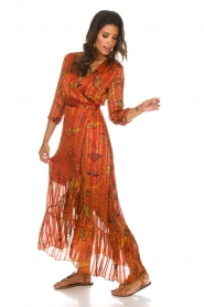 ba&sh |  Maxi dress Disy | orange  | Picture 5