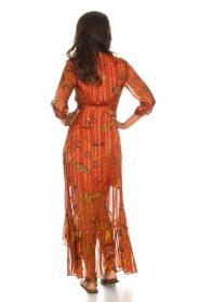 ba&sh |  Maxi dress Disy | orange  | Picture 6