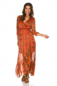 ba&sh |  Maxi dress Disy | orange  | Picture 4