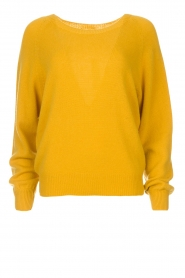 Set |  Sweater Evy | yellow  | Picture 1