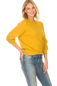 Set |  Sweater Evy | yellow  | Picture 4