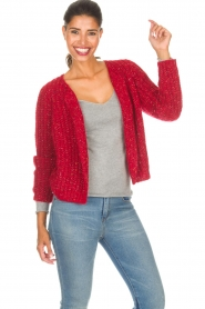 Set |  Cardigan Sissi | red  | Picture 2