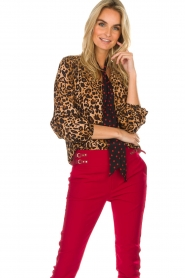 Set |  Top Polka | brown  | Picture 2