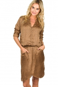 Rabens Saloner |  Dress Lisamay | brown  | Picture 6