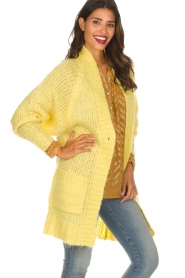 Lolly's Laundry |  Cardigan Carrie | yellow  | Picture 4