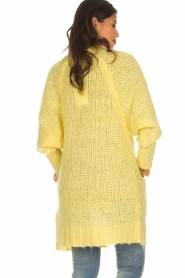 Lolly's Laundry |  Cardigan Carrie | yellow  | Picture 5