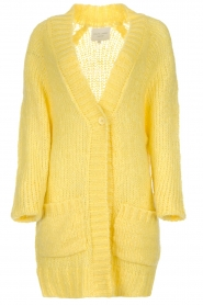 Lolly's Laundry |  Cardigan Carrie | yellow  | Picture 1