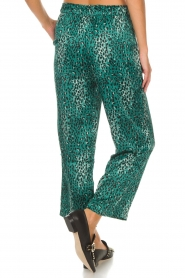 Lolly's Laundry |  Pants Aila | green  | Picture 5