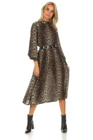 Lolly's Laundry |  Midi dress Alberte | animal print  | Picture 3