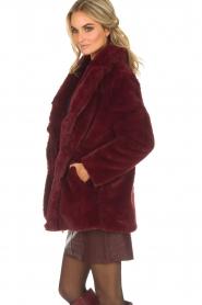 Lolly's Laundry |  Faux-fur coat Emma | bordeaux  | Picture 4