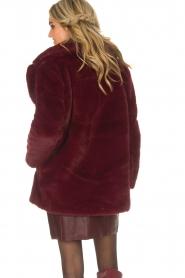 Lolly's Laundry |  Faux-fur coat Emma | bordeaux  | Picture 5