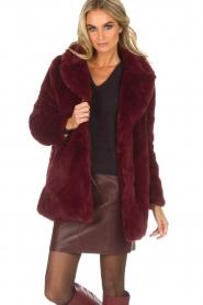 Lolly's Laundry |  Faux-fur coat Emma | bordeaux  | Picture 2