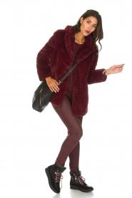 Lolly's Laundry |  Faux-fur coat Emma | bordeaux  | Picture 7