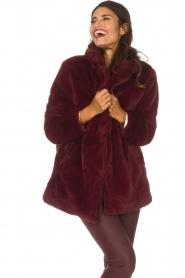 Lolly's Laundry |  Faux-fur coat Emma | bordeaux  | Picture 8