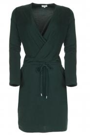 Dante 6 | Getailleerde jurk Daze | groen  | Afbeelding 1