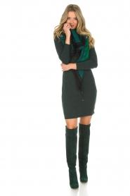 Dante 6 | Getailleerde jurk Daze | groen  | Afbeelding 7