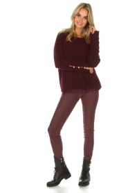 Dante 6 |  Suede leggings Nomar | bordeaux  | Picture 2