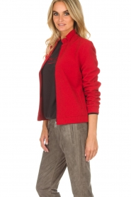 Dante 6 |  Bomber jacket with ruffles on the back Debutante | red  | Picture 4