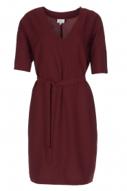 Dante 6 |  Dress with slit in the sleeves Stello | bordeaux  | Picture 1