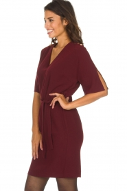 Dante 6 |  Dress with slit in the sleeves Stello | bordeaux  | Picture 5