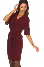 Dante 6 |  Dress with slit in the sleeves Stello | bordeaux  | Picture 4